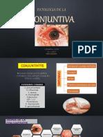 conjuntiva-patologias