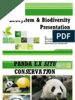 Ecocystem & Biodiversity Presentation