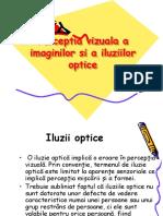 22574127 Perceptia Vizuala Si Iluzii Optice