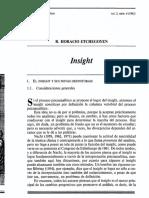 Insight Etchegoyen.pdf