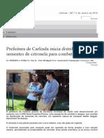Prefeitura Carlinda Distribui Sementes Citronela