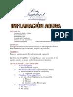 INFLAMACIoN_INMUNIDAD