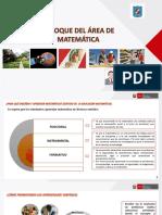 ENFOQUE DEL AREAcurriculardematematica2016
