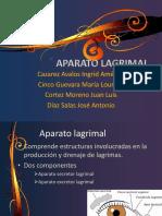 aparatolagrimalylagrima-111001151402-phpapp02