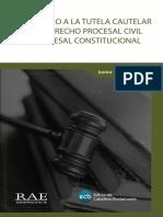La Tutela Cautelar Proceso Civil- Rae Jurisprucencia