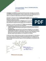 Tema 17. Metabolismo Del Glucógeno y Su Regulación