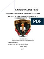 Primera Correccion Informe Pre Profesional.docx