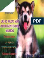 7-121103201205-phpapp02.pdf