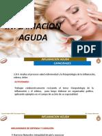 14- Inflamacion Aguda (1)