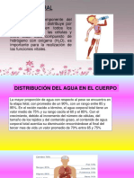 AGUA-CORPORAL-power-point.pptx