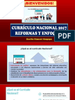 curriculo nacional2017