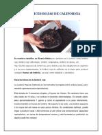PDF file at sector 5050960.pdf