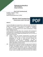 Programa Direito Civil Constitucional - Propriedade, Estado e Mercado