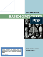 181340428-Basidiomycetes-Caracteristicas-Generales-pdf.pdf