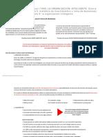 esquema_13_incerti_tomadeci_y_organiz_intelig.pdf