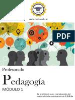 pedagogía modulo 1