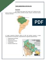 Region Amazonica de Bolivia - Informe Final