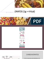 Carbohidratos Procesos Biologicos