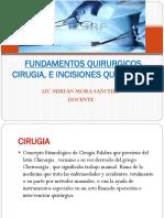 Fundamentos 3-4cirugia, e Incisiones Quirurgica