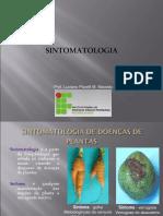 2-_sintomatologia