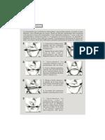 labio.pdf