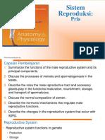 Fisiologi Sistem Reproduki Pria-2015