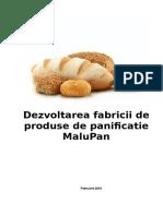 Proiect Fabrica de Paine-1