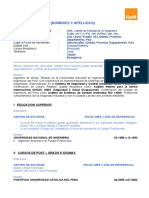 40213220-Modelo-de-CV.doc