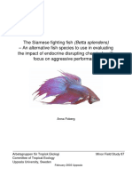 The Siamese fighting fish (Betta splendens).pdf
