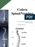 02-Cedera Spine & Spinalcord 2016