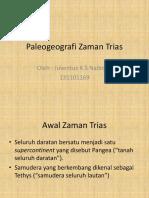 Paleogeografi Zaman Trias