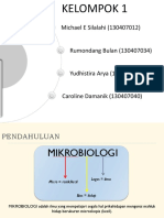 Slide Mikro 1