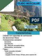 Clase de Histología Del Tejido Muscular