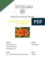 Propuesta Flores