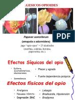 1.10.Opioides.pdf