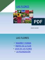lasflores-120531015855-phpapp02.pptx
