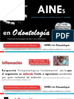 142987611-AINES-pdf