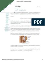 Laboratorio 9_ Transpiración - Portafolio Electronico Biologia Fatores