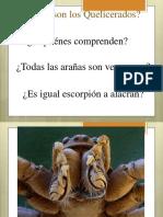 Clase Teórica de Quelierados 2015.pdf