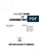 86078594 Consumer Protection Project 1