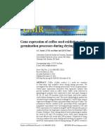 Gene Expression in Coffee Fermentation Using RT-qPCR