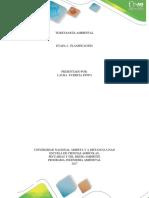 Etapa 2_ Planificasion_ Apporte Individual