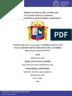 Ticona Quispe Jose Luis
