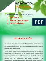 unidaddidcticadecienciasnaturalesen3o-110615201230-phpapp02.pptx