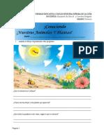 Librop.a.conociendonuestrosanimalesyplantas.docx