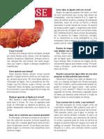 Folder Cirrose
