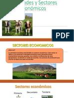 Actividades y Sectores Econmicos 150626232435 Lva1 App6891