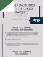 Aula - Prova Testemunhal - Prof. Camila Spmarques 2017
