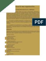 areas basicas de una organizacion.docx