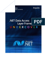 NET Data Access Framework Undercover